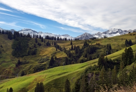 beautiful landscape with alpine meadows in the background of snowy peaks Stock Photo - 19268250