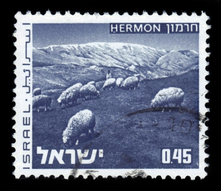 ISRAEL - CIRCA 1973: A stamp printed in Israel, shows herd of sheep on Mount Hermon, series  landscapes of Israel  , series, circa 1973