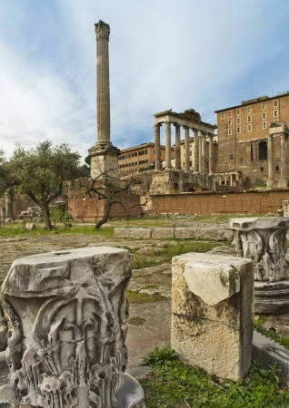 picturesque ruins of ancient Rome, the Roman Forum Stock Photo - 19403819