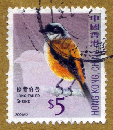 HONG KONG - CIRCA 2006: A stamp printed in Hong Kong, China shows long-tailed shrike or rufous-backed shrike, circa 2006