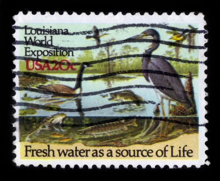 USA - CIRCA 1984  a stamp printed in USA showing an life of water fauna, dedicated to Louisiana World Exposition in New Orleans, circa 1984