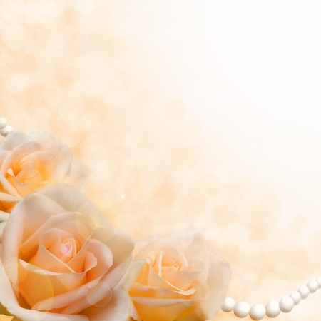 Beautiful soft cream roses on blurred background as the theme for Valentine s Day or wedding Stock Photo