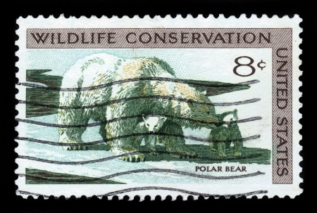wildlife conservation: USA - CIRCA 1971  A Stamp printed in USA shows the Polar Bear and Cubs, Wildlife Conservation issue, circa 1971