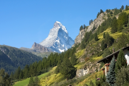 wooded slopes of the Swiss Alps with views of Mont Blanc