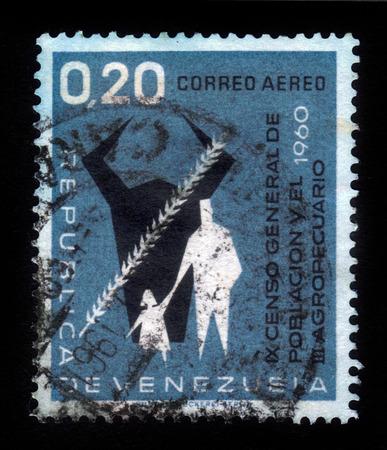 censo: VENEZUELA - CIRCA 1961 un sello impreso en la Venezuela muestra Cow s Head, Grain, Hombre y Ni�o, noveno Censo General y tercero del Censo Agr�cola, azul, serie, alrededor del a�o 1961 Editorial
