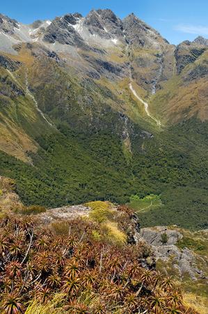 mackinnon: Milford Track, fabulous scenery in New Zealand