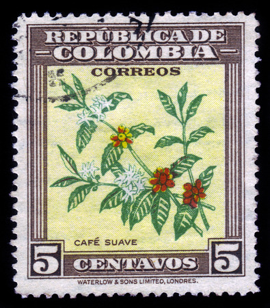 postage: COLOMBIA - CIRCA 1947  A postage stamp printed in Colombia shows the coffee plant, circa 1947