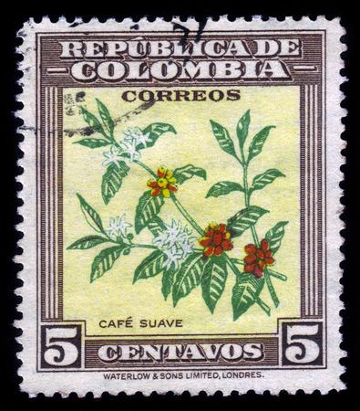 COLOMBIA - CIRCA 1947 Een postzegel gedrukt in Colombia toont de koffie plant, circa 1947