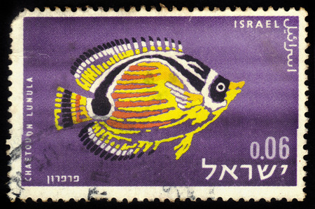 ISRAEL - CIRCA 1962  A stamp printed in Israel, shows exotic fishes found in Red sea, raccoon butterflyfish, Chaetodon Lunula, circa 1962 Stock Photo - 27840115