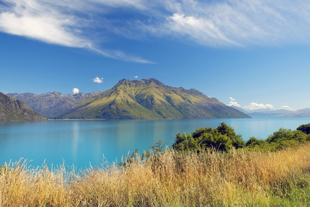 beautiful landscapes with wild nature of New Zealand