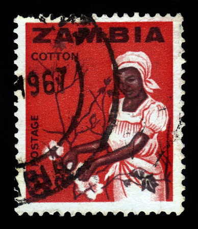 ZAMBIA - CIRCA 1964: a stamp printed in Zambia shows young woman picking cotton, circa 1964