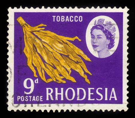 queen elizabeth ii: RHODESIA - CIRCA 1966: A stamp printed in Rhodesia shows Queen Elizabeth II and tobacco leaves, circa 1966 Editorial