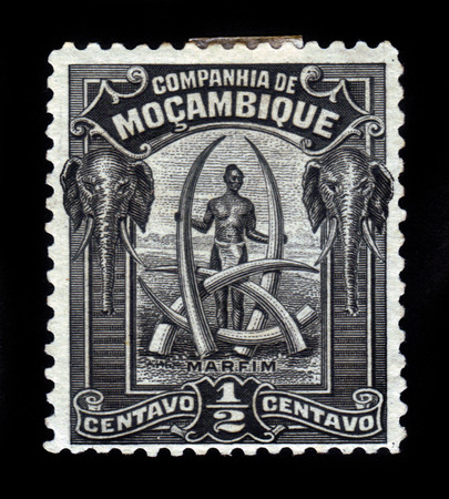 tusks: Company of Mozambique ( Portuguese Mozambique )- CIRCA 1918: A stamp printed in Portugal shows trophies, tusks of elephants, circa 1918 Editorial