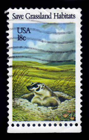 habitats: USA - CIRCA 1981: A stamp printed in United States of America shows north american badger, save grassland habitats, circa 1981 Editorial