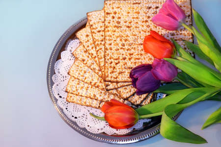 jewish food: jewish holiday of Passover and its attributes, with matzo and spring tulips - Happy Passover