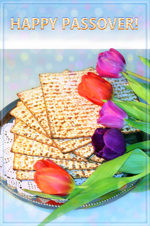 attributes: jewish holiday of Passover and its attributes, with matzo and spring tulips with the inscription Happy Passover