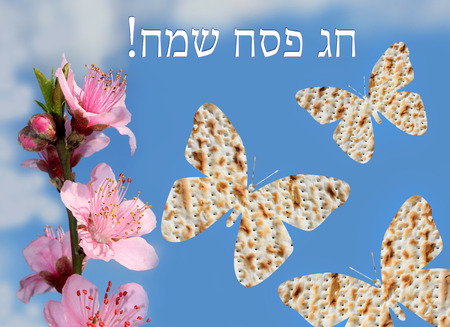 piety: flowering peach tree branch and three butterflies made from matzo on the background of bright blue sky with the inscription in Hebrew - Happy Passover