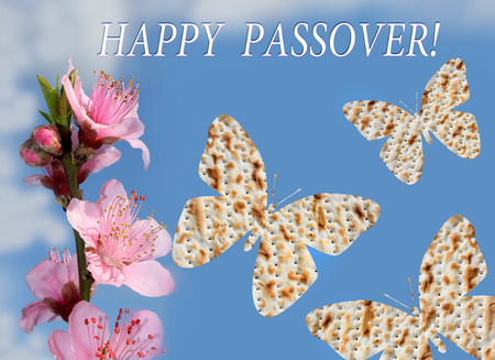 flowering peach tree branch and three butterflies made from matzo on the background of bright blue sky with the inscription - Happy Passover