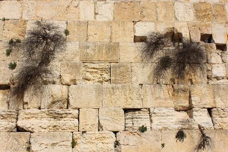 simbolos religiosos: fragmento del Muro de los Lamentos en Jerusal�n uno de los sitios m�s sagrados de la tradici�n religiosa jud�a de Israel Foto de archivo