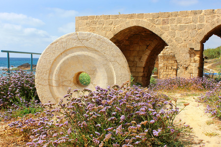 millstone: national park Achziv ruins of the old turkish fortress in the Western Galilee Israel