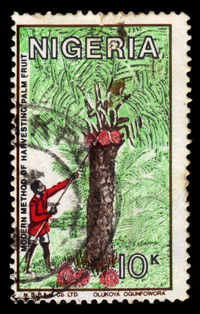 tree service pictures: NIGERIA - CIRCA 1986: A stamp printed in Nigeria, shows modern method of harvesting palm fruit, coconut harvest, circa 1986