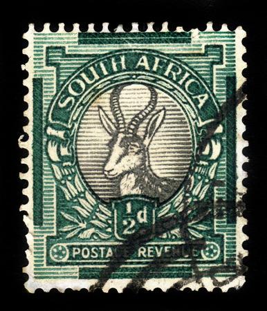 springbok: SOUTH AFRICA - CIRCA 1947: a stamp printed in South Africa shows head of springbok, circa 1947 Editorial
