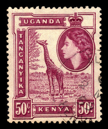 red stamp: Giraffe (Giraffa camelopardalis) Editorial