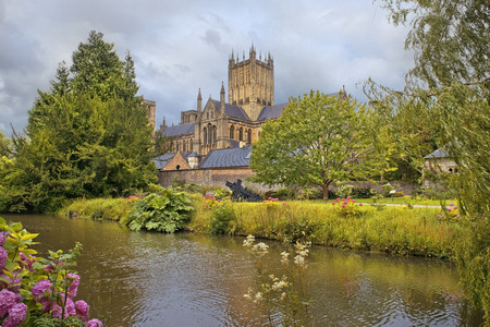 wells: Wells Cathedral Cathedral Church of Saint Andrew, Wells Abbey and park on sunny day, Somerset, England