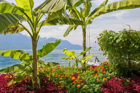 berth: picturesque shores of Lake Geneva, Switzerland