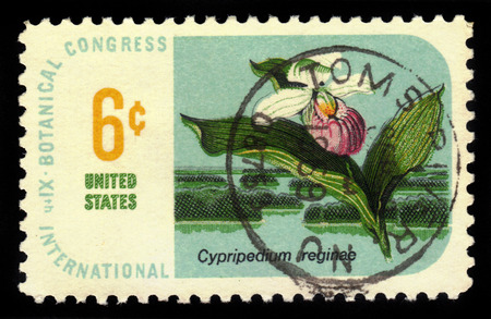 UNITED STATES - CIRCA 1969: A stamp printed in USA shows Ladys-slipper Cypripedium reginae, Botanical Congress Issue, circa 1969