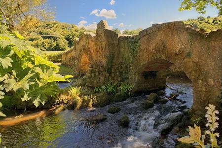 amantes: Los amantes del puente sobre el río Avill, el Molino Walk, el castillo de Dunster en Somerset, Inglaterra Foto de archivo