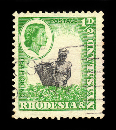 queen elizabeth: RHODESIA AND NYASALAND - CIRCA 1959: A stamp printed in Federation of Rhodesia and Nyasaland, also known as the Central African Federation (CAF) shows Queen Elizabeth II and tea picking, circa 1959 Editorial