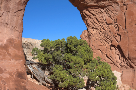 arches national park: Arches National Park, Utah, USA