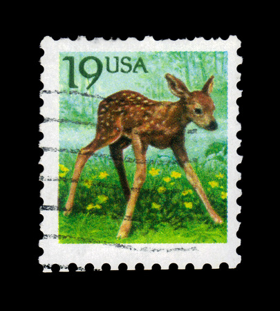 capreolus: UNITED STATES OF AMERICA - CIRCA 1991: A stamp printed in USA shows small fawn (Capreolus capreolus), circa 1991 Editorial