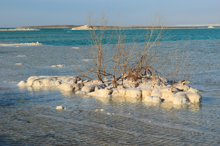 salt deposits, typical landscape of the Dead Sea, Israel Stock Photo