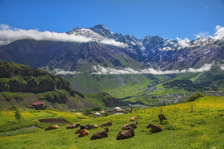landscape in the Caucasus Mountains, Kazbegi region, Georgia