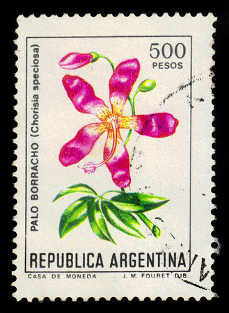 ARGENTINA - CIRCA 1983: a stamp printed in the Argentina shows palo borracho, ceiba speciosa is a sub-tropical tree in forests of South America, series, circa 1983