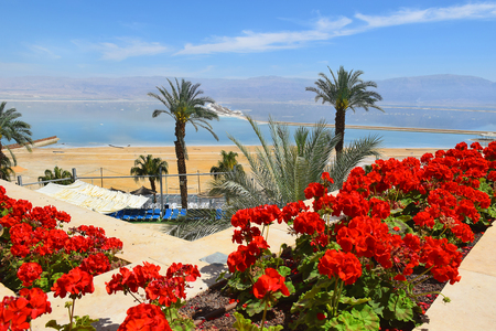 picturesque landscape at the Dead Sea, Ein Bokek, a resort on the Israeli shore