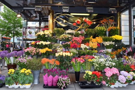 VIENNA, AUSTRIA - 26 may 2019: sale of colorful decorative flowers in a flower stall on the street in Vienna Banque d'images - 133521720
