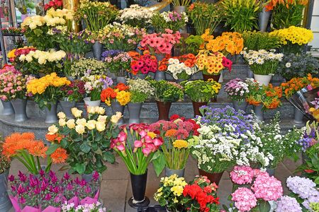 sale of colorful decorative flowers in a flower stall on the street in Vienna