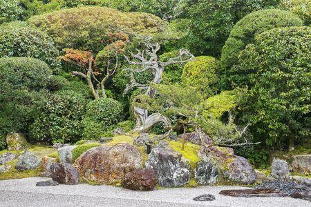 autumn landscape in the picturesque Kyoto park, Japan