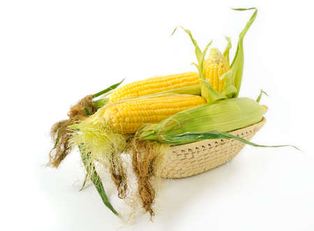 agro: Fresh corncobs in a basket on white background