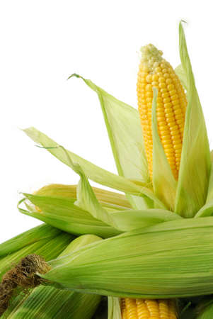 mais: Fresh corn cobs closeup Stock Photo