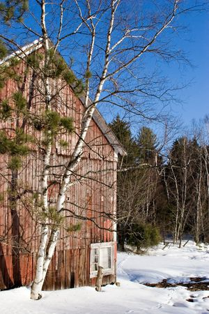 Red barn and birch. The last snow. Spring in Stove. Vermont Stock Photo