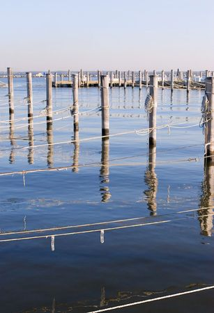Old wooded dock poles and ropes on Marina by the Atlantic ocean in New Jersey state. Vertical.