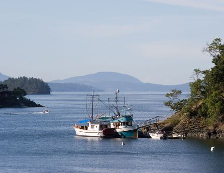 woody bay: Boats moored at the wooded coastline of Vancouver Island. British Columbia.