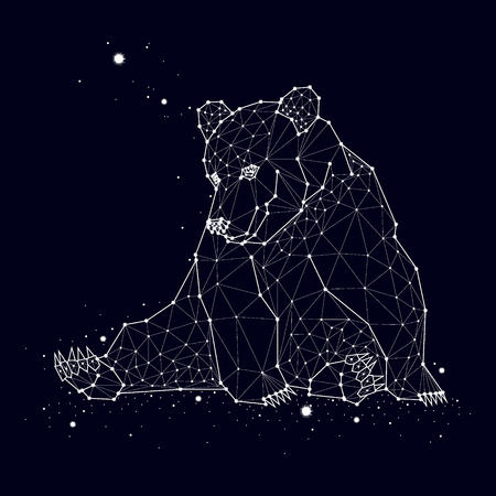 Bear constellation