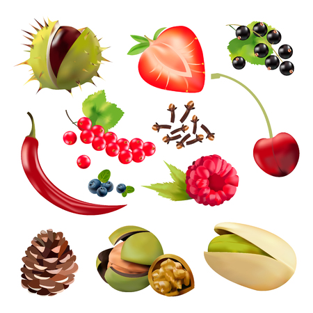 Realistic berries, vector graphics,