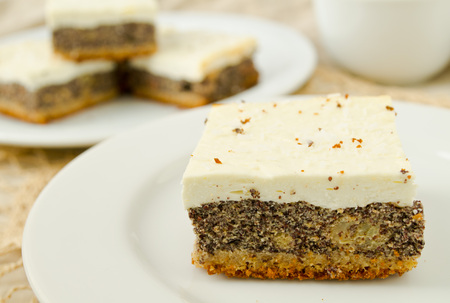 poppy seed: Delicious homemade sweet cheesecake with poppy seed on white plate