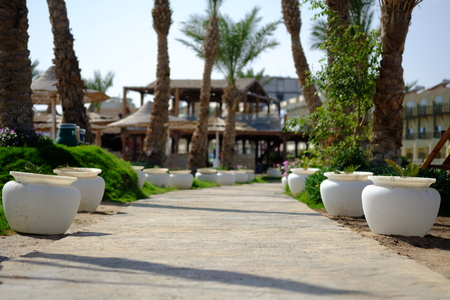 walking path: Walking path with palm trees and ceramic pots in resort